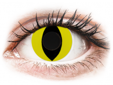 CRAZY LENS - Cat Eye Yellow - zonder sterkte (2 gekleurde daglenzen)